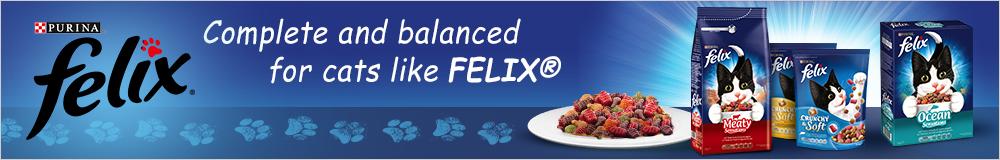 Felix Dry Cat Food