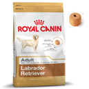 Royal Canin Labrador