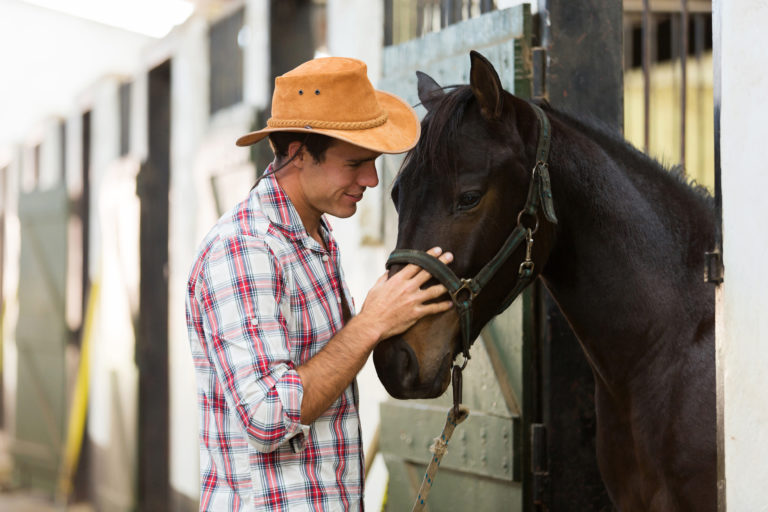 horse whisperer - problem horse