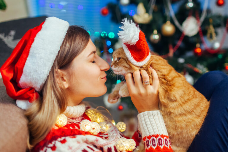 Christmas gift ideas for cats