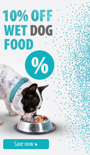 wet dog food discount feb 2020