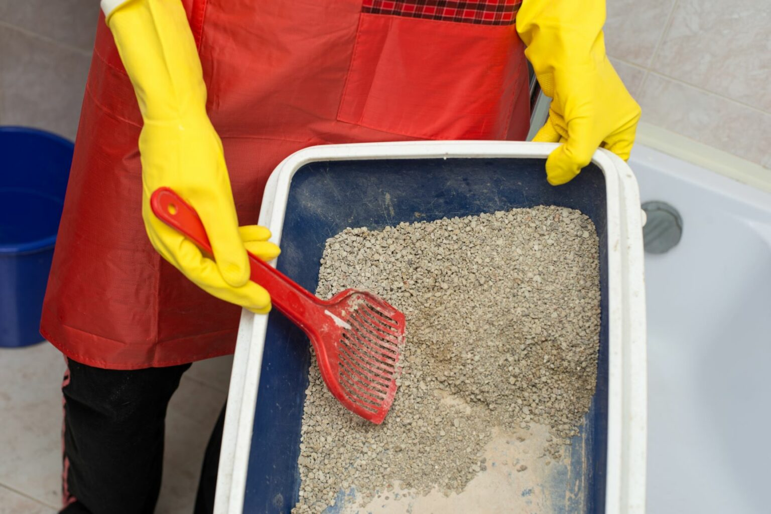 cleaning cat litter